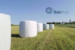 EM-637520_01_A_balle-1